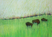 American Bison Pastels Prints - Bison at Fermi Lab Print by Jane Wilcoxson