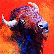 Prairies Painting Posters - Bison Attitude Poster by Marion Rose