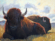 Bison Originals - Bison Bulls by Susan Bell