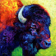 Bulls Metal Prints - Bison Head Color Study III Metal Print by Marion Rose