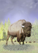 Bison Digital Art - Bison on the Range by Thomas J Herring