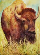 Yellowstone Painting Metal Prints - Bison or Buffalo Metal Print by Patricia Pushaw