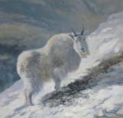 Goat Painting Originals - Bit of Open Browse by Mary Ann Cherry