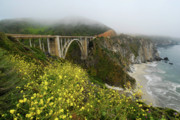 Bixby Bridge Metal Prints - Bixby Bridge Metal Print by Harry Spitz