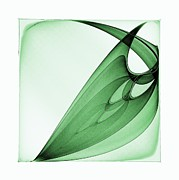 Bizarre Leaf Print by Klara Acel