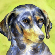 Dog Watercolor Framed Prints - Black and Tan Dachshund Framed Print by Cherilynn Wood