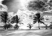 Sunset Drawings - Black and White Caribbean Sunset by Kelli Swan
