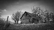 Horse And Buggy Prints - Black and White Farm House Print by Steve McKinzie