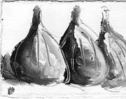 Black And White Fig Study Print by Suzanne Jenne
