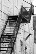Fire Weed Prints - Black and White Fire Escape USA near Infrared Print by Sally Rockefeller