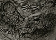 Liger Drawings - Black and White horses by Taylor Higgins