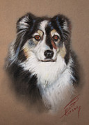 Malamute Prints - Black and White Print by Ylli Haruni