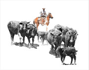 Calves Prints - Black Angus Print by Dewain Maney