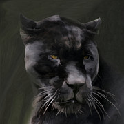 Big Cat Digital Art Acrylic Prints - Black Beauty Acrylic Print by Vic Weiford