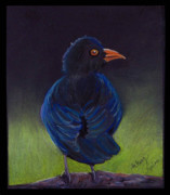Blackbird Drawings Metal Prints - Black Bird Metal Print by Miriam Borg
