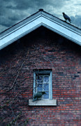 Haunted House Photos - Black Birds on Old House by Jill Battaglia