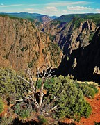 Ravine Framed Prints - Black Canyon Framed Print by Benjamin Yeager