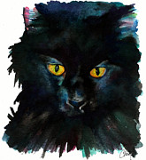 Watercolor Cat Paintings - Black Cat by Christy  Freeman