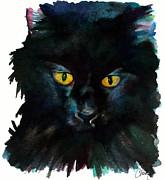 Black Cat Print by Christy  Freeman
