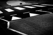 Animal Humor Prints - Black Cat Crossing Print by Dorit Fuhg