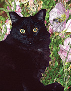 Alice Ramirez - Black Cat Startled by a...