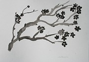 Sumie Framed Prints - Black Cherry  Framed Print by Alma Yamazaki