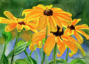 Yellow Flowers Posters - Black-Eyed Susans Poster by Sharon Freeman