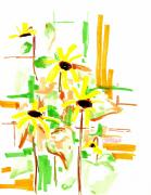 Exotic Drawings Framed Prints - Black Eyed Susans Framed Print by Teddy Campagna