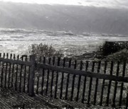 Beach Fence Digital Art Posters - Black Fence Poster by Jefferson Hobbs