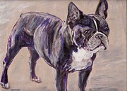 Arthur Rice Framed Prints - Black Frenchie Framed Print by Arthur Rice