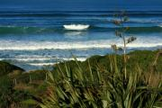 Terry Perham Photos - Black Head Beach Dunedin by Terry Perham