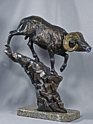 Wildlife Art Sculpture Posters - Black Hills Biggie Poster by Peggy Detmers