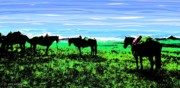 Montana Digital Art - Black Horses ... Montana Art Photo by GiselaSchneider MontanaArtist
