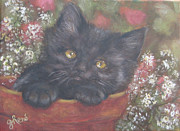 Kitten Prints Framed Prints - Black Kitten in a Terra Cotta Pot Framed Print by Gayle Rene