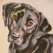 Animal Greeting Cards Drawings Posters - Black Lab Aint No Cure For Love Poster by Susan A Becker