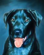 Michael Spano - Black Lab