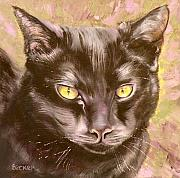 Kitty Drawings Posters - Black Pearl Poster by Susan A Becker