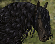 Friesian Posters - Black perfection Poster by Kate Black