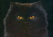 Animal Portraits Posters - Black Persian Poster by Andrew Farley