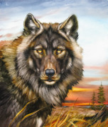 Martin Katon Metal Prints - Black Phase Wolf Metal Print by Martin Katon