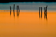 Refelctions Photos - Black Pilings Orange Water by Rich Franco