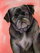 Original Watercolor Paintings - Black Pug by Cherilynn Wood