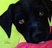 Black Lab Mixed Media - Black Puppy - Shelter Dog by Laura  Grisham