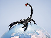 Problems Posters - Black Scorpion Sitting On Top Of A Globe Poster by Michael Blann