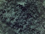 Silvie Kendall - Black Snow