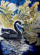 Moonlight Drawings Posters - Black Swan and Tree Ferns no1 Poster by Helen Duley