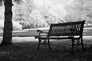 Surreal Infrared Dreamy Landscape Prints - Black White Infrared Charleston Battery Park Bench Print by Kathy Fornal