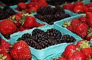 Blackberries And Strawberries Print by Cathie Tyler