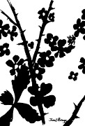 Contemporary Botanical Art Drawings - Blackberry Bushes by Janel Bragg