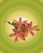 Blackberry Photo Posters - Blackberry Lily In Yellow Poster by Patricia Motley